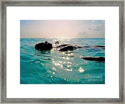 Tranquility Framed Print by Carey Chen