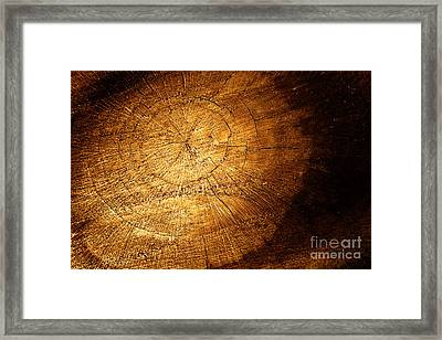 Tree Texture Background Framed Print by Mythja  Photography