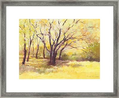 Trees2 Framed Print