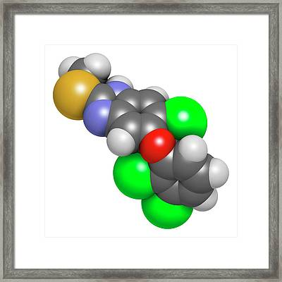 Triclabendazole Anthelmintic Drug Framed Print by Molekuul