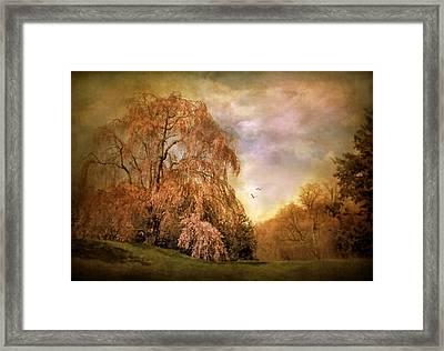 Tristesse Framed Print by Jessica Jenney