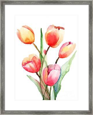 Tulips Flowers Framed Print