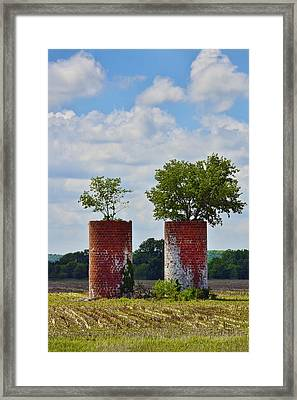 Twins Framed Print by Skip Hunt