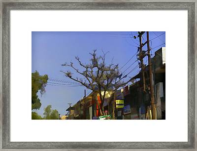 Typical Scene In A Street In A Small Town In India Framed Print