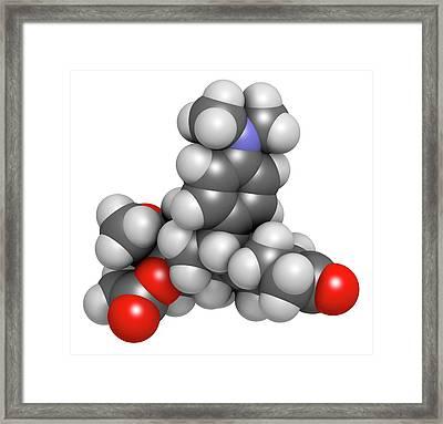 Ulipristal Acetate Contraceptive Drug Framed Print by Molekuul
