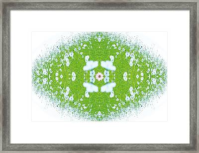 Unnatural 37 Framed Print by Giovanni Cafagna