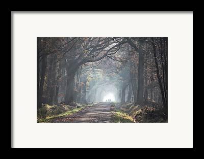 Jogging Framed Prints