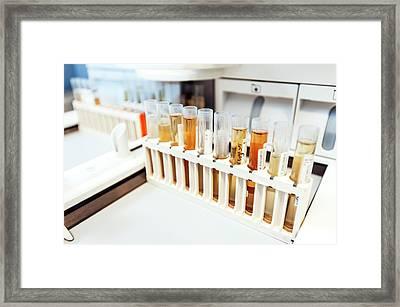 Urology Laboratory Framed Print