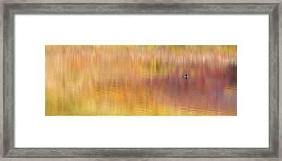 Usa, Alaska, Denali National Park Framed Print by Jaynes Gallery