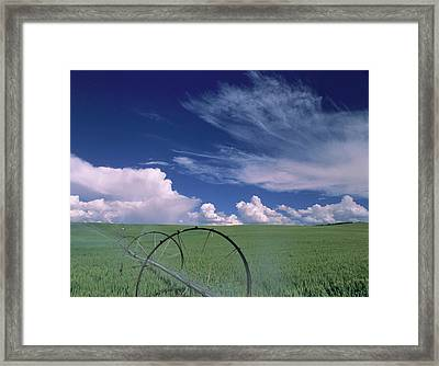 Usa, Idaho, Green Wheat Field, Clouds Framed Print by Gerry Reynolds