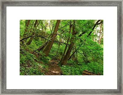 Usa, Oregon, Portland, Oak Bottoms Framed Print