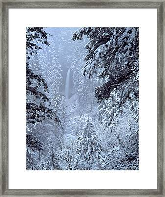 Usa, Oregon, Silver Falls State Park Framed Print