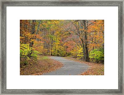 Usa, Tennessee, Falls Creek Falls State Framed Print by Jaynes Gallery
