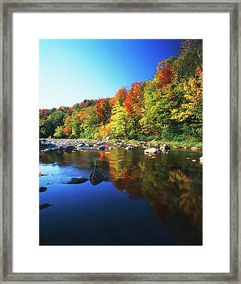 Usa, Vermont, Autumn Trees Reflected Framed Print