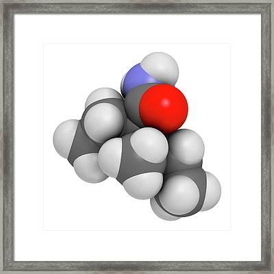 Valnoctamide Sedative Drug Molecule Framed Print