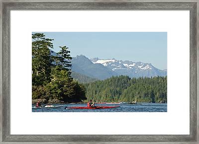 Vancouver Island, Tofino Framed Print by Matt Freedman