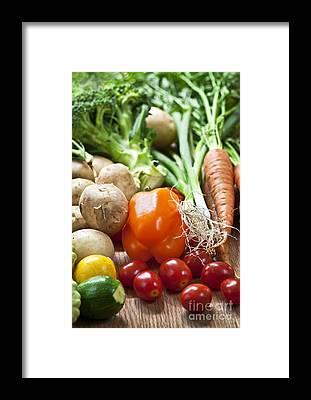 Zucchini Framed Prints