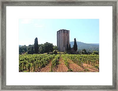Vineguard Framed Print