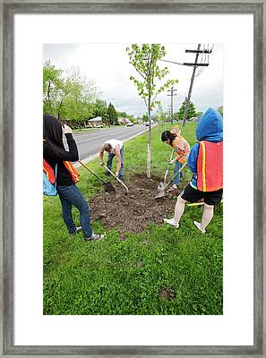 Volunteers Planting Trees Framed Print