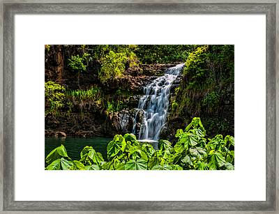 Waimea Falls Framed Print