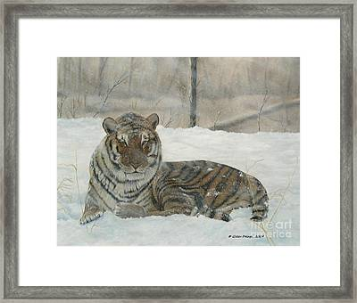 Waiting Out The Storm. Framed Print by Gilles Delage