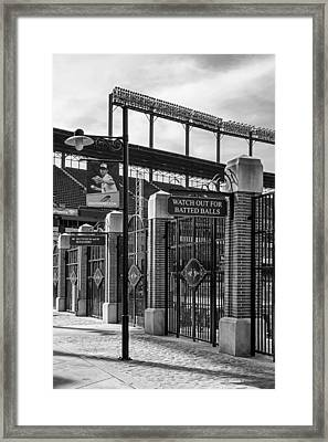 Watch Out For Batted Balls Framed Print