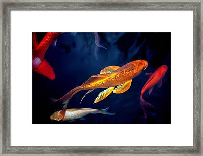 Water Ballet Framed Print by Martina  Rathgens