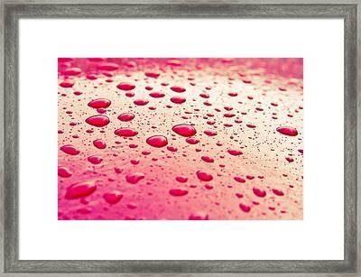 Water Droplets Framed Print by Tom Gowanlock