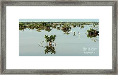 Water Pond  Framed Print by Javier Correa