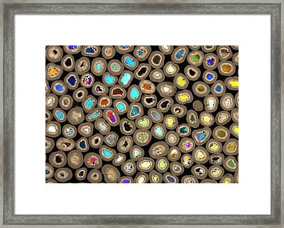 Water Softening Pellets Framed Print by Dirk Wiersma