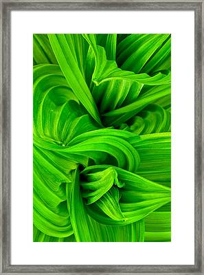 Wavy Green Framed Print by Jeff Sinon