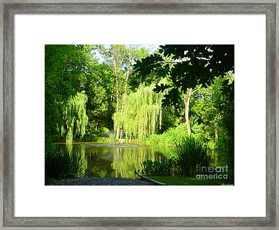 Weeping Willow Pond Framed Print by Lyric Lucas