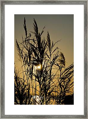 Framed Print featuring the photograph Whalehead Sunset Obx #3 by Greg Reed