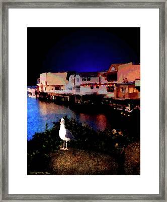 Wharf Gull Framed Print