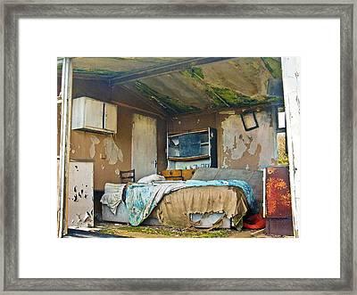 Where Do They Sleep Now Framed Print by Tony Reddington