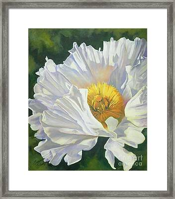 White Poppy Framed Print