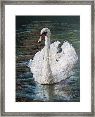 White Swan Framed Print by Jieming Wang
