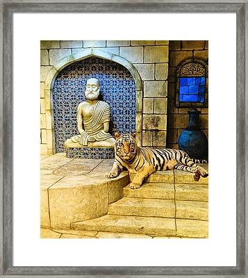 White Tiger Framed Print by Dan Sproul