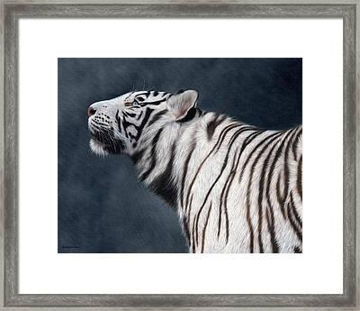 White Tiger Painting Framed Print by Rachel Stribbling