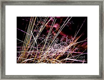 Wild Grasses Abstract Framed Print by Natalie Kinnear