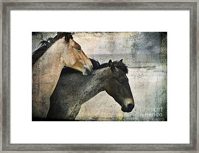 Wild Love Framed Print by Laura Marie Jones