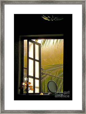 Window To The Soul Framed Print by Amy Fearn