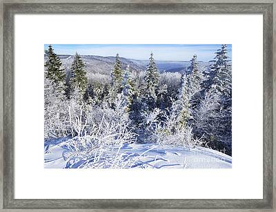 Winter Along The Highland Scenic Highway Framed Print by Thomas R Fletcher