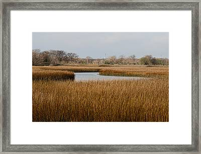 Winter Marsh Framed Print