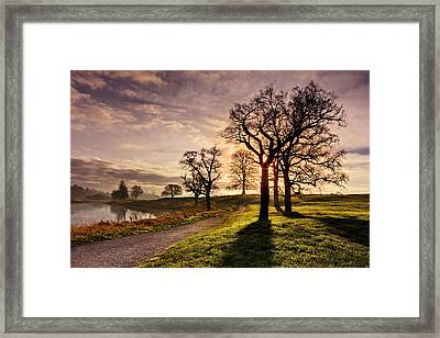 Framed Print featuring the photograph Winter Morning Shadows / Maynooth by Barry O Carroll