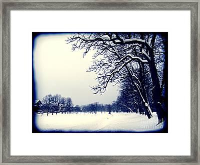 Winter Framed Print by Nina Ficur Feenan
