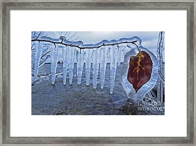 Winter... Framed Print by Nina Stavlund
