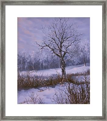 Winter Slumber Framed Print