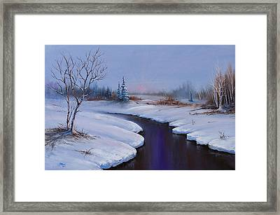Winter Stillness Framed Print by C Steele