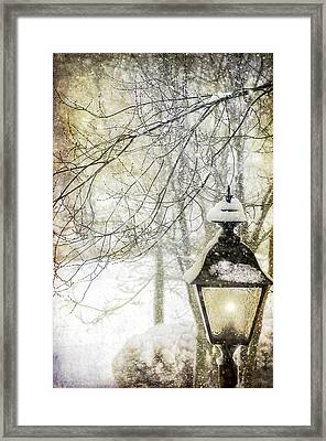 Winter Stillness Framed Print by Julie Palencia